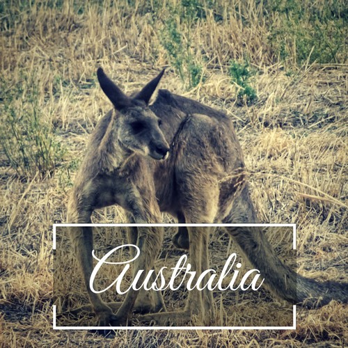Discover Australia backpacking adventures