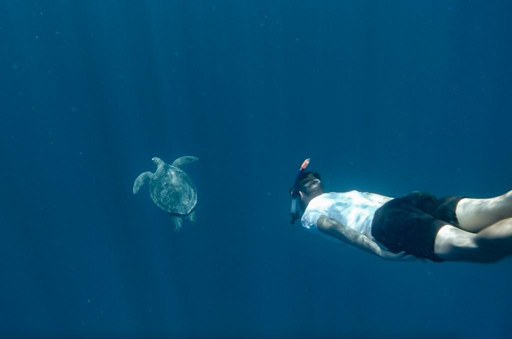 Diving around Gili Air Island