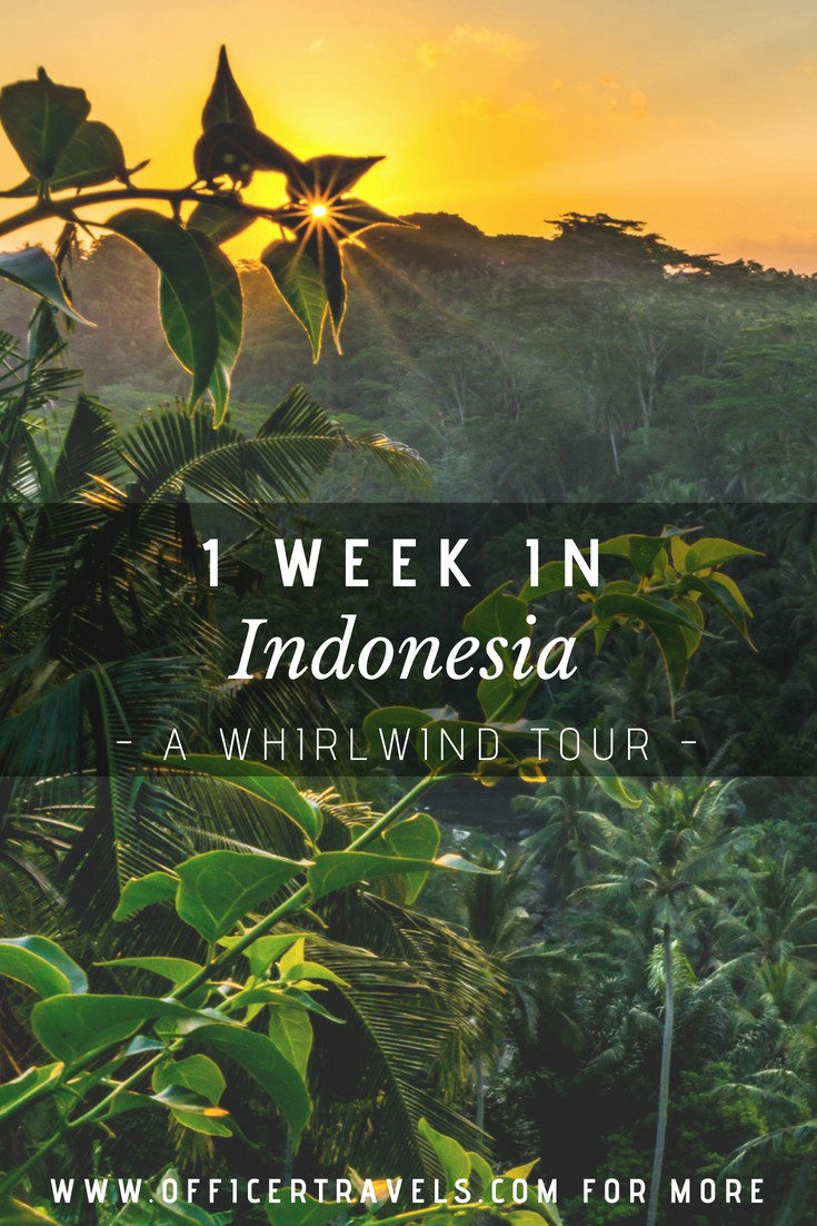 A one week guide to Indonesia. We spent one week traveling around Indonesia and want to help you find make the most of your trip. Find unique Indonesian Islands and discover new wildlife with our travel guide to the best places in Indonesia | #Islandhopping #indonesia #travelguide #snorkelling #giliair #gillithree #bali #nusapendia #tourguide #indonesianislands #tutrlespotting