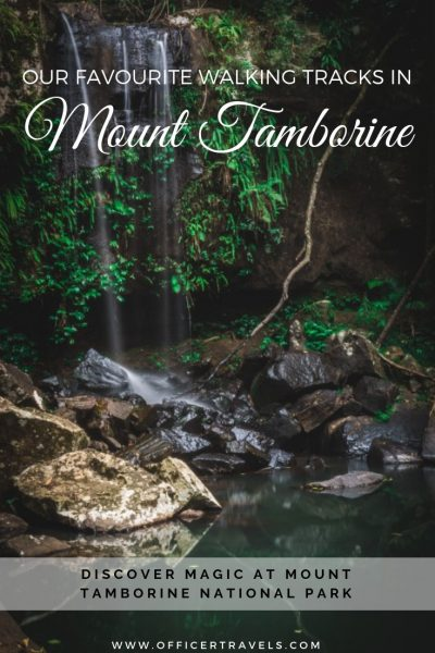 Walking tracks in Mount Tamborine are both magical and beautiful. They're the perfect day trip from Brisbane, just an hours drive from the city. Find out which ones were our favourites in our latest post! | #mounttmborine #brisbane #thisisqueensland