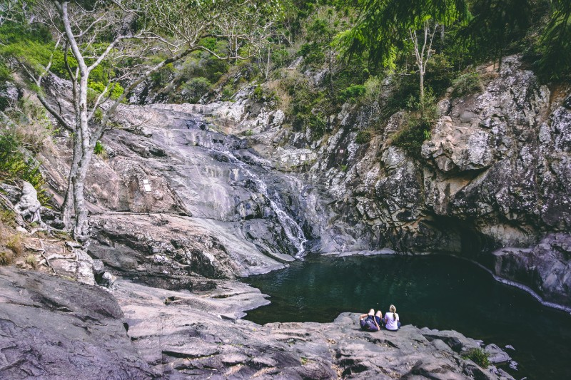 walking tracks in Mount Tamborine make great day trips from the gold coast