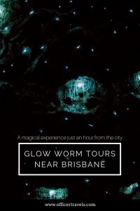 Mount Tamborine glow worm cave tours a truly magical, find out why they're a must see while you're in Brisbane! | #thisisqueensland #brisbane #glowworms