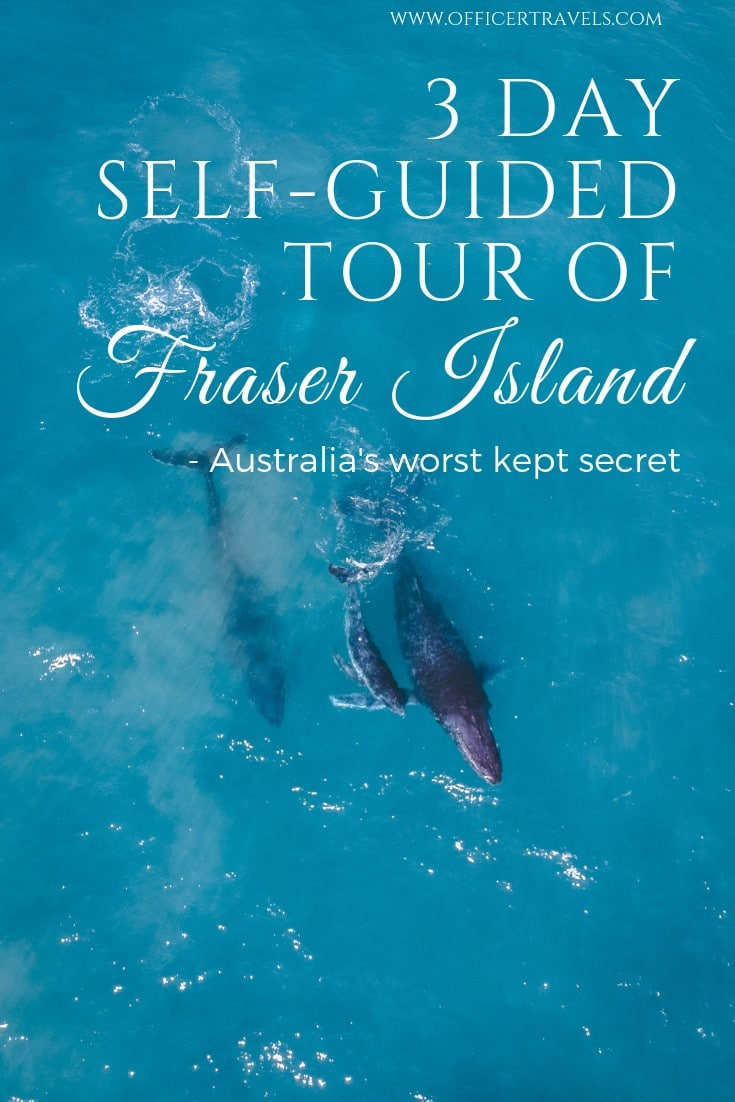 Fraser Island is Australia's worst kept secret and we LOVED IT. Discover why this Island is a must see when travelling the East Coast in our latest post. From tea stained lakes, to a solitary paradise, this world heritage site has it all | #fraserisland #queensland #worldheritage #australia #eastcoast