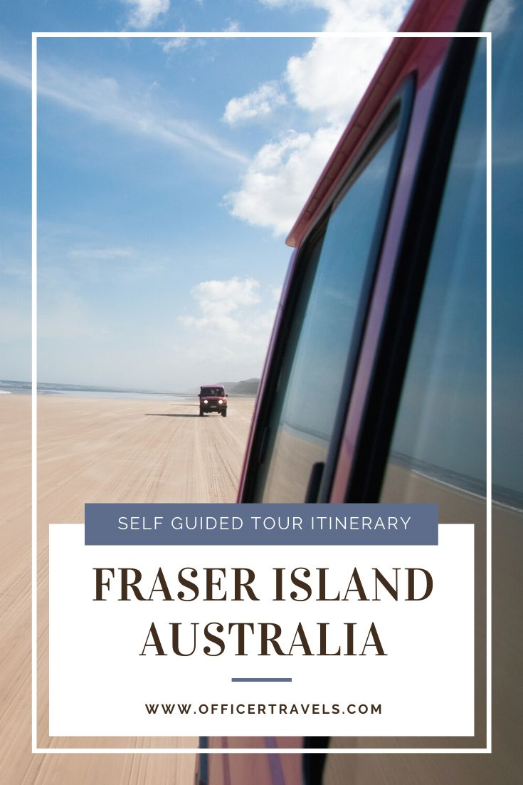 Fraser Island, A tropical paradise for more than just a few reasons. Wild Dingos, white sand and crystal clear waters are just some of the reasons we know you'll love it! Find out how you can enjoy it at your own pace with a self-guided tour! | #roadtrip #eastcoast #austrralia #queensland #fraserisland #dingos #wildlife #worldheritage #island