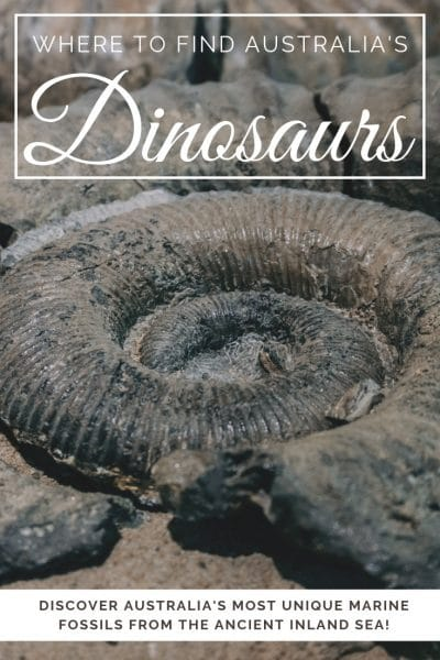 Did you know Australia used to have an inland sea? It did! And hidden beneath its surface was a vast array of unique marine wildlife. At Richmond's Dinosaur Museum is uncovering these prehistoric marine animals, along with some of Australia's most unique fossils | #Australia #dinosaurs #queensland #thingstodoinaustralia #QLDAustralia