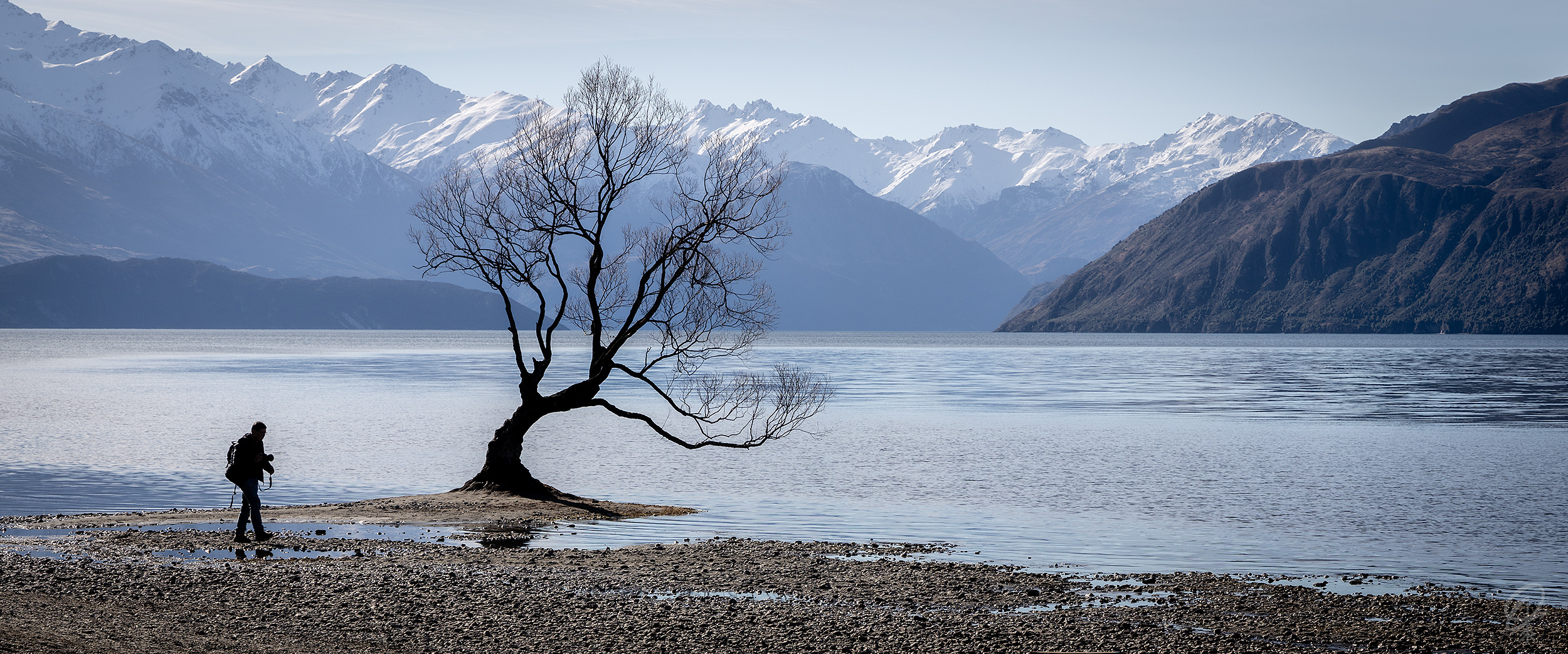 THE MOST FAMOUS thing to do in Wanaka