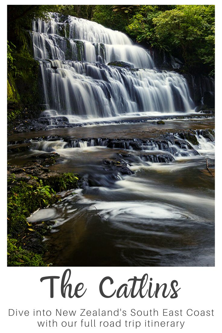 pinterest images for road trip through the Catlins